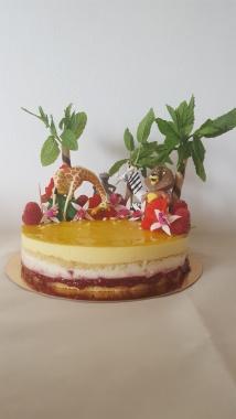 Raspberry and Mango Entremet