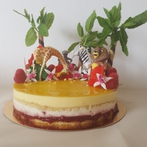 Raspberry and Mango Entremet